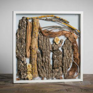 """collezione privata """" Lui"""": materiali -corteccia di quercia millenaria di Lucera (FG), rose - 50x50 cm"""