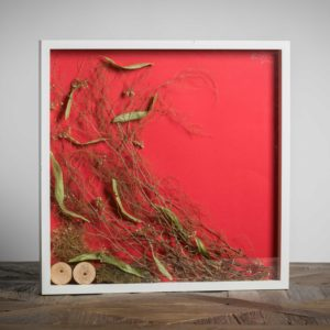 Senza Titolo – venduto - materiali: rondelle di legno, flora spontanea - 50x50 cm