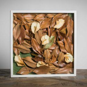 Foglie al vento - materiali: foglie di magnolia grandiflora, fiori di calle, rete metallica, cartoncino colorato - 50x50 cm