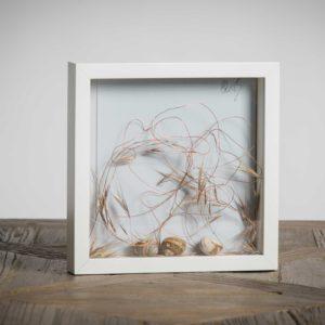 Grovigli 1 (collezione privata) - materiali: fili di rame, flora spontanea, gusci di lumaca - 25x25 cm